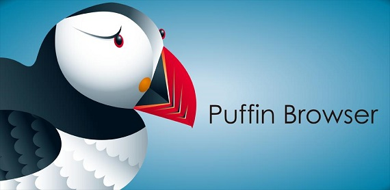 Puffin Web Browser для компьютера
